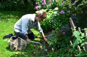 Garden healing