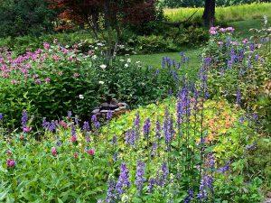 The sun garden in August
