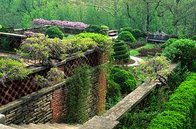 Dumbarton Oaks, terrace view